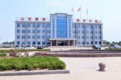 Shandong Bihai Machinery Co., Ltd.