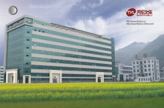 Wenzhou Lingfeng Electronic Technology Co., Ltd.