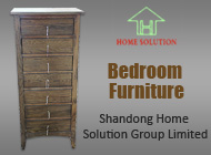 Shandong Home Solution Group Limited