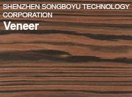 SHENZHEN SONGBOYU TECHNOLOGY CORPORATION