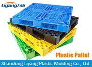 Shandong Liyang Plastic Molding Co., Ltd.