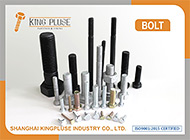 Shanghai Kingpluse Industry Co., Ltd.