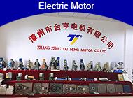 ZHANGZHOU TAIHENG MOTOR CO., LTD.