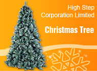High Step Corporation Limited