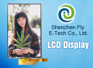 Shenzhen Fly E-Tech Co., Ltd.