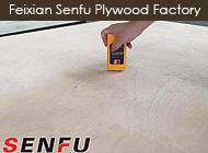 Feixian Senfu Plywood Factory