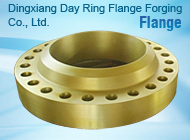 Dingxiang Day Ring Flange Forging Co., Ltd.