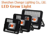 Shenzhen Chengyi Lighting Co., Ltd.
