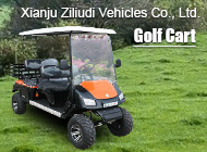 Xianju Ziliudi Vehicles Co., Ltd.