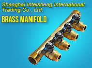 Shanghai Intelsheng International Trading Co., Ltd.