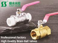 Zhejiang Shunshui Valve Co., Ltd
