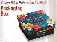 China BGIs Enterprise Limited