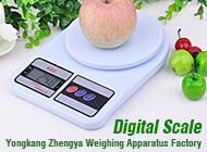 Yongkang Zhengya Weighing Apparatus Factory