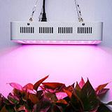 Plant Grow Light Lamp