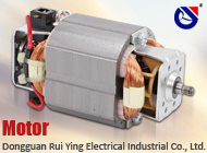 Dongguan Rui Ying Electrical Industrial Co., Ltd.