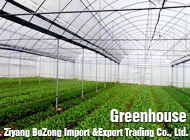 Ziyang BoZong Import &Export Trading Co., Ltd.