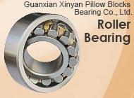 Guanxian Xinyan Pillow Blocks Bearing Co., Ltd.