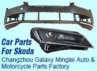 Changzhou Galaxy Minglei Auto & Motorcycle Parts Factory