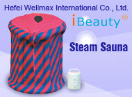 Hefei Wellmax International Co., Ltd.