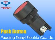Yueqing Tianyi Electric Co., Ltd.