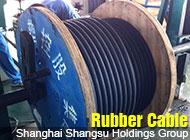 Shanghai Shangsu Holdings Group
