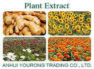 ANHUI YOURONG TRADING CO., LTD.
