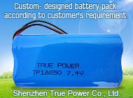 Shenzhen True Power Co., Ltd.