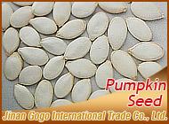 Jinan Gogo International Trade Co., Ltd.
