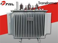 Taili Electric Co., Ltd.