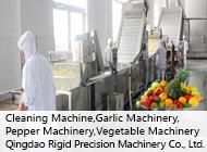 Qingdao Rigid Precision Machinery Co., Ltd.