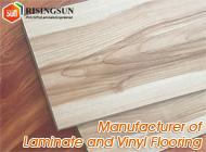 Risingsun New Materials Co., Ltd.