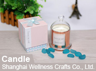 Shanghai Wellness Crafts Co., Ltd.
