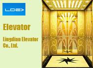 Lingdian Elevator Co., Ltd.