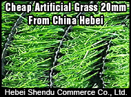Hebei Shendu Commerce Co., Ltd.