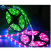 LED Strip - GA Lighting (Shenzhen) Limited