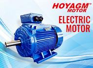 HONGYANG ELECTRIC MOTOR (WEIHAI) CO., LTD.