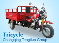 Chongqing Tengtian Group