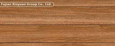 Fujian Xinyuan Group Co., Ltd.