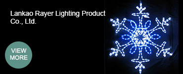 Lankao Rayer Lighting Product Co., Ltd.