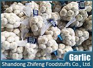 Shandong Zhifeng Foodstuffs Co., Ltd.