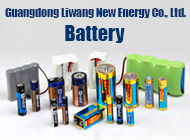Guangdong Liwang New Energy Co., Ltd.