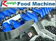 Qingdao Ruizhi Precision Weighing Equipment Co., Ltd.