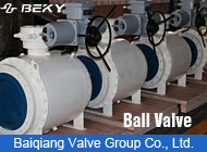 Baiqiang Valve Group Co., Ltd.
