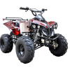ATV - Wuyi Qiaowei Electrical Vehicle Co., Ltd.