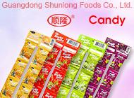 Guangdong Shunlong Foods Co., Ltd.