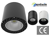 Gentwin LED Lighting Co., Ltd.