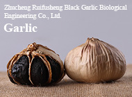 Zhucheng Ruifusheng Black Garlic Biological Engineering Co., Ltd.