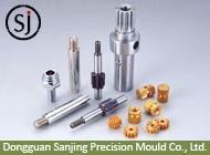 Dongguan Sanjing Precision Mould Co., Ltd.