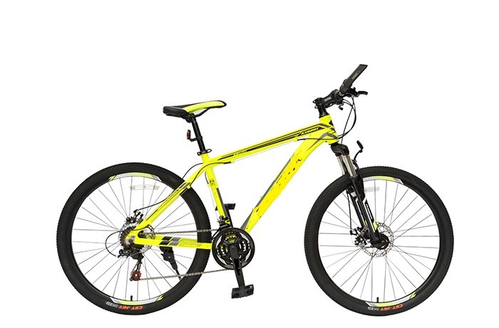 Mountain Bike - Tianjin Polyloid Technology Co., Ltd.